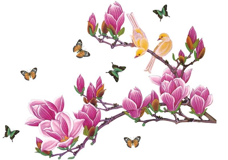 一朵粉色玉兰花图片